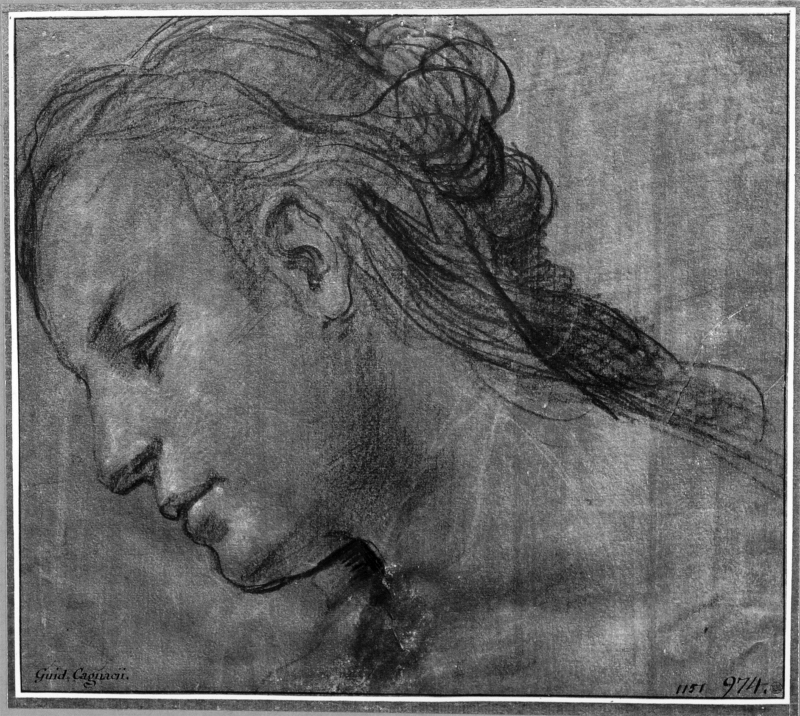 Head of a woman in left profile, looking down