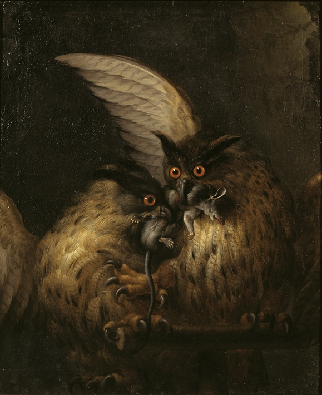 Two owls fighting over a rat