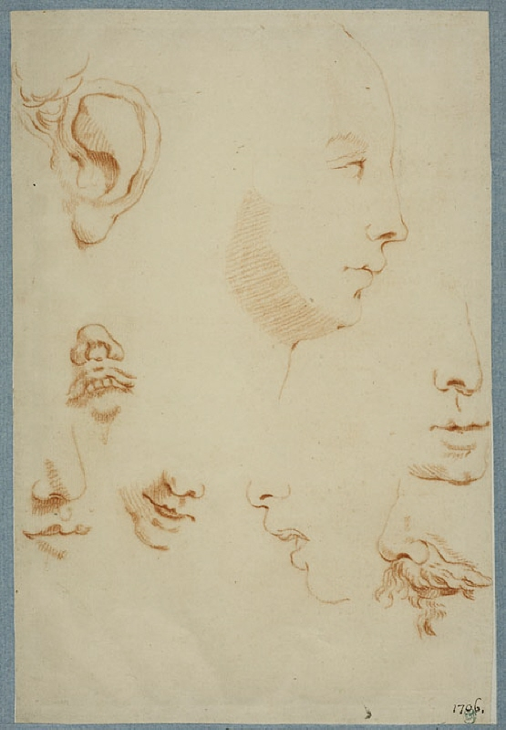 Profile of a Face, and Studies of Noses, Ears and Mouths
