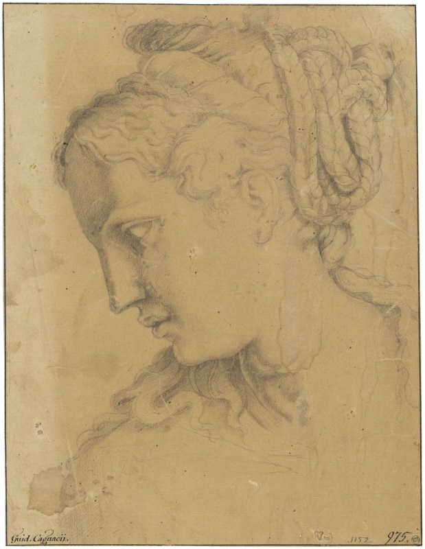 Study for the head of a woman