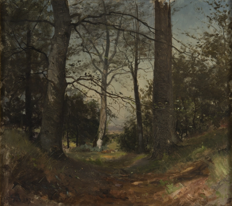 In the Forest. Motif from Stehag, Skåne. Study